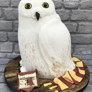 Harry Potter Hedwig Owl cake